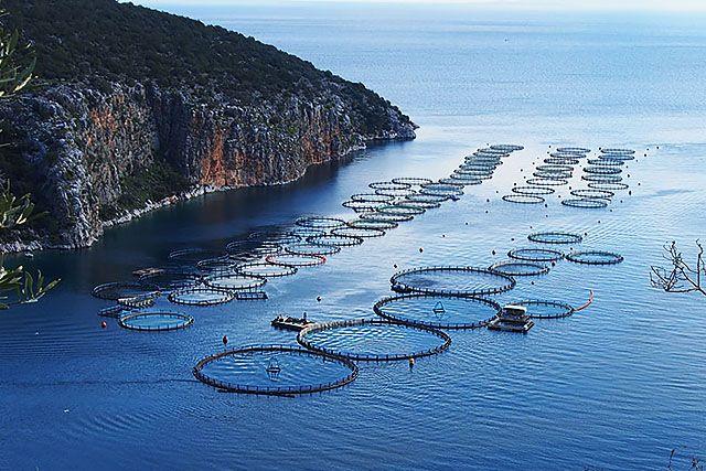 Нов прием по Програмата за морско дело и рибарство мярка 4.1
