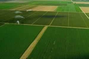 От днес земеделските стопани могат да проверяват площите за подпомагане