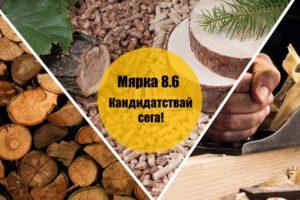 Дървопреработка/производство на пелети – кандидатствай по мярка 8.6!