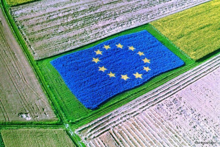 Как ще изглежда новият програмен период 2021-2027 за ОСП (Обща селско стопанска политика)