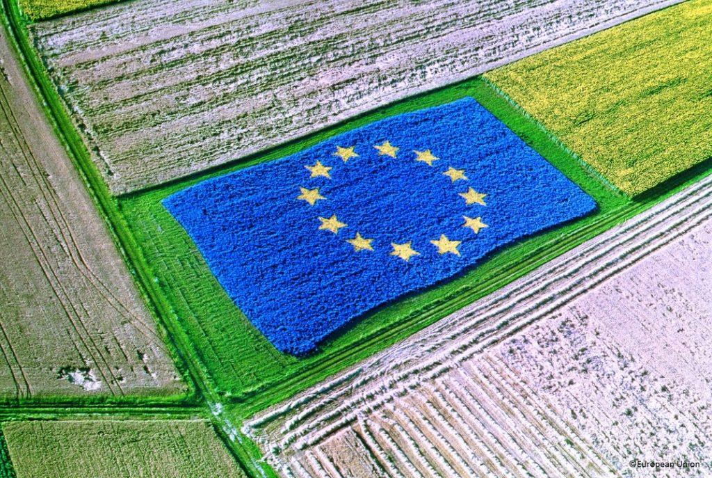 naujosios zelandijos biologinės įvairovės strategija 2021 m prekybos signalų atsisiuntimas